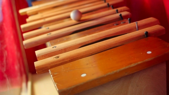 Musical Organon: Xylaphone